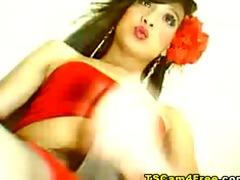 lady-boy anal show
