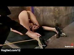 fastened nipps to toes chick feet caned