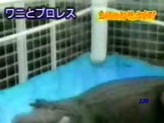 japan overload